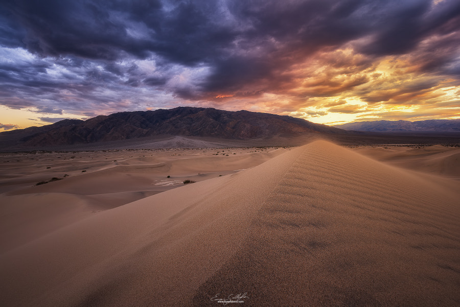 Desert Dreams by Eamon Gallagher on 500px.com