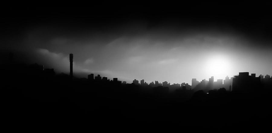 Foggy Morning III