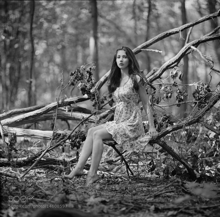 Photograph *** by Arthur Pivtorak on 500px