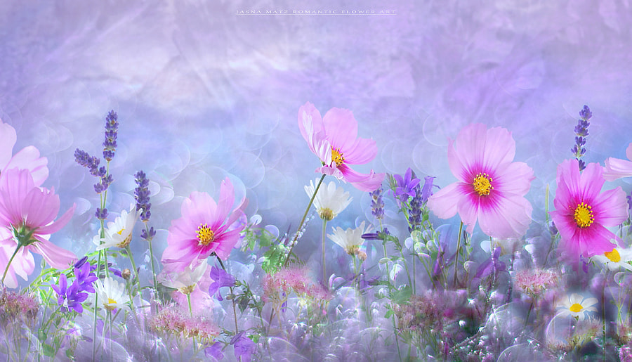 ~ Spring symphony ~ by Jasna Matz on 500px.com