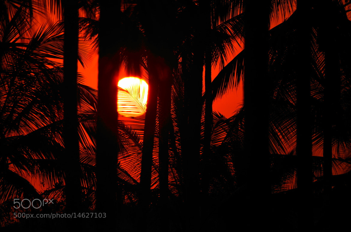 Photograph SOL by ALBERTO ALVARENGA on 500px