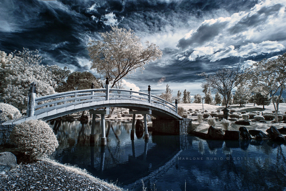 Photograph Japanese Garden by Marlone Rubio on 500px
