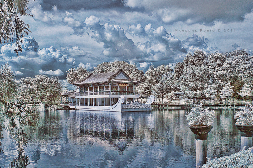 Photograph Chinese Garden by Marlone Rubio on 500px
