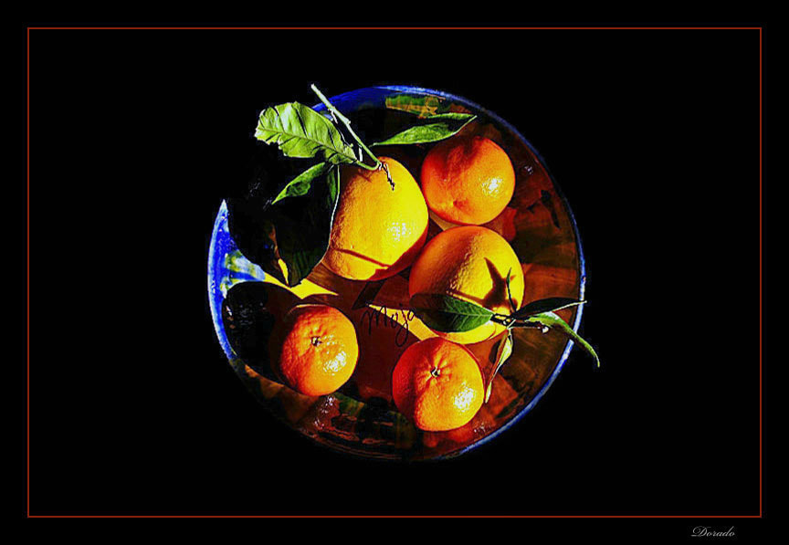 Photograph Oranges and tangerines. by Juan Dorado on 500px