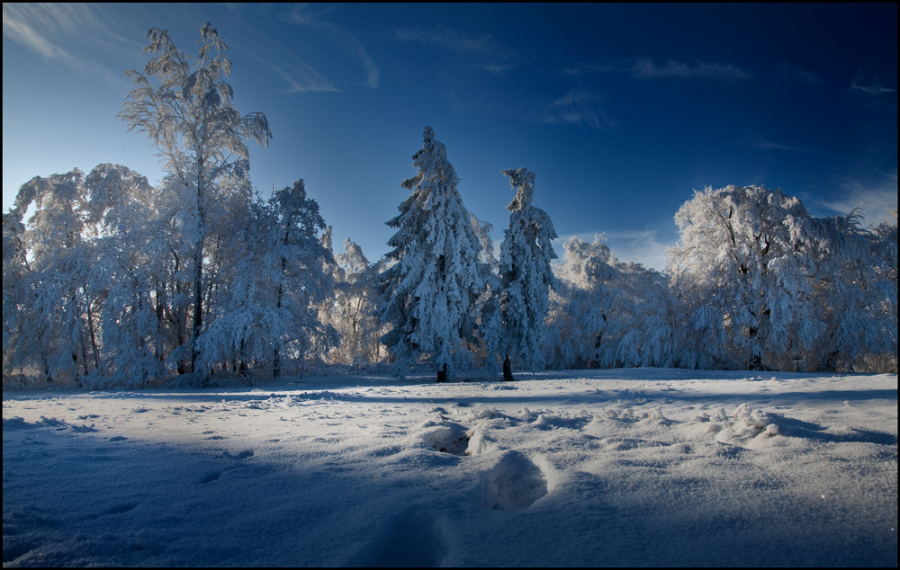 Photograph Frozen by Lars Prignitz on 500px