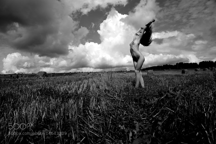 Photograph field nude by yuri bazhan on 500px