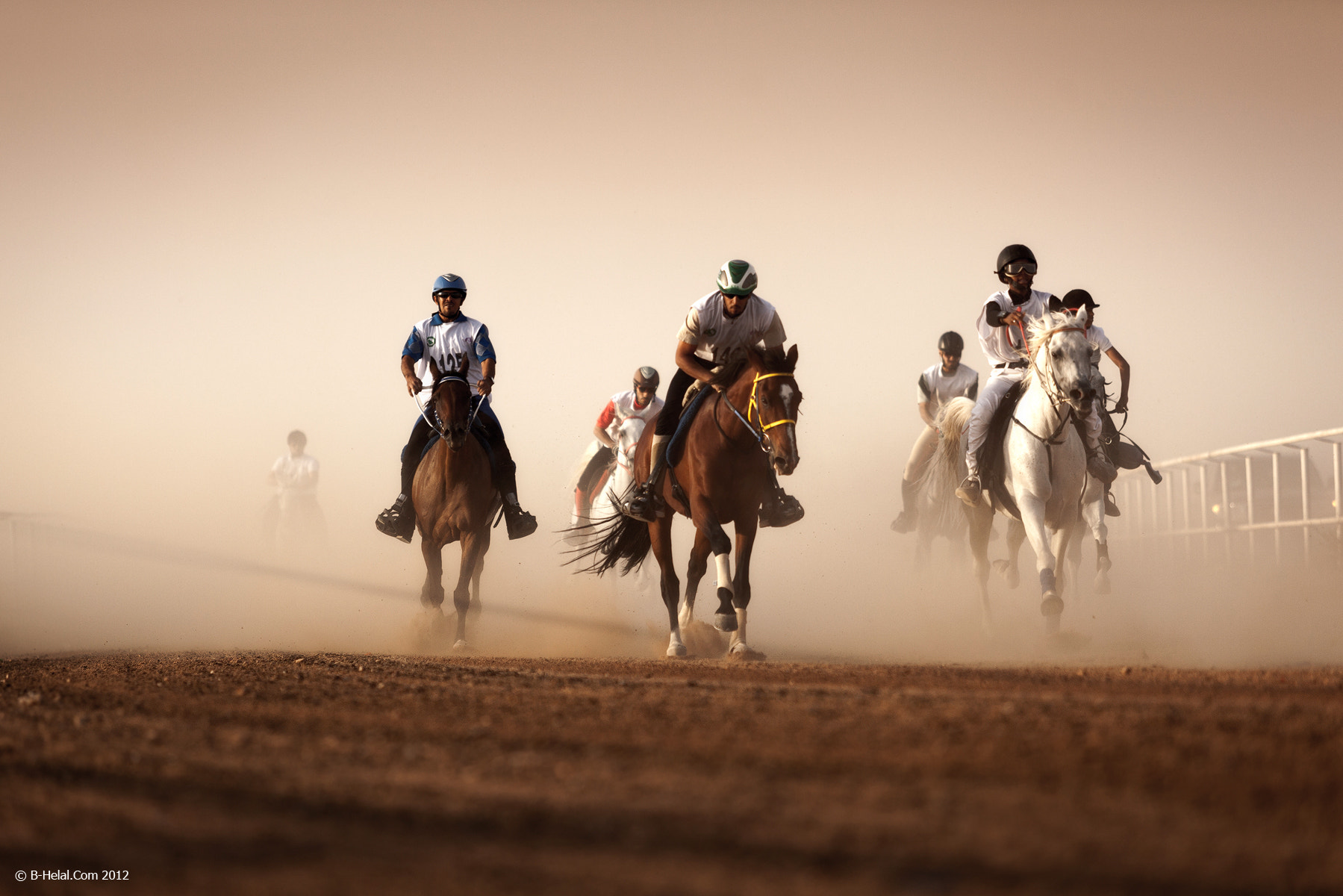 Photograph Horse Marathon by Naja Helal on 500px