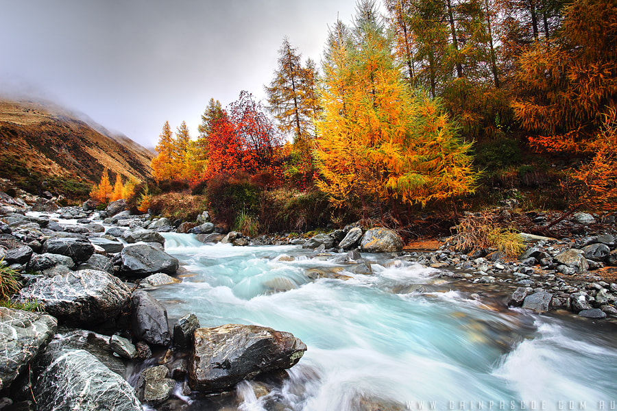 Photograph Autumn Stream by Cain Pascoe on 500px