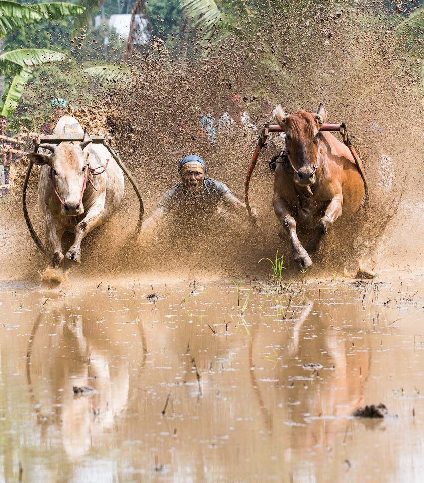 Photograph Bull Run - split with reflections by Fang Keong Lim on 500px