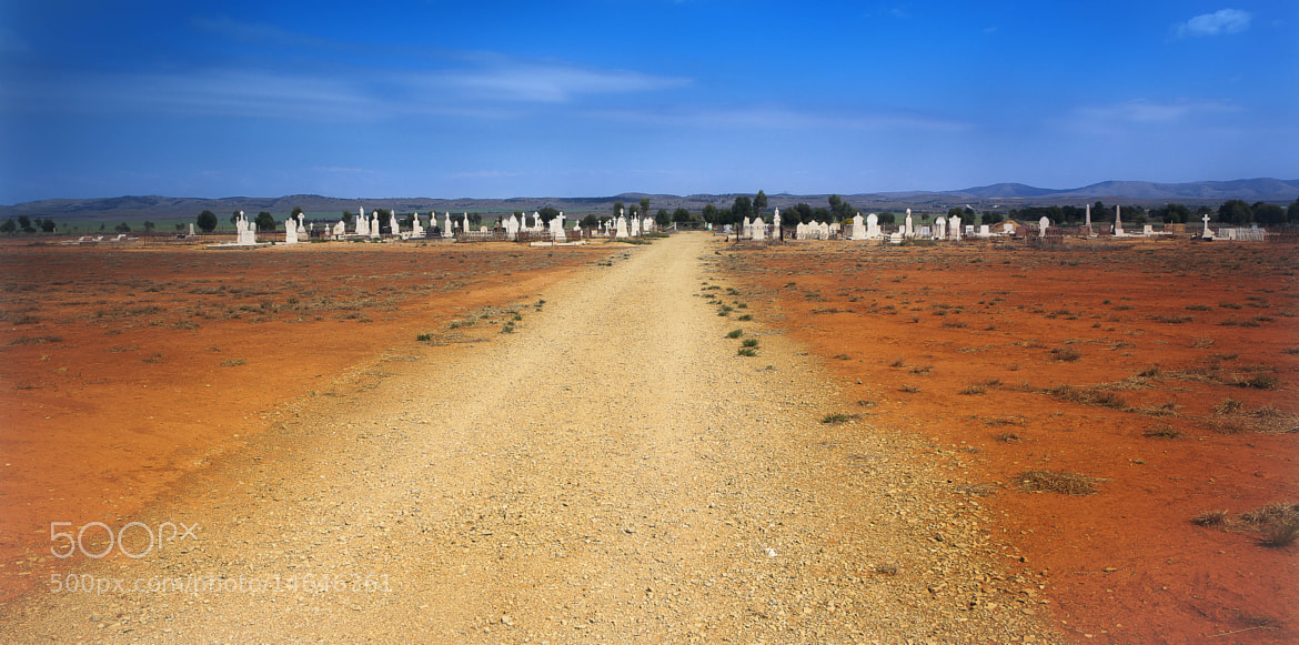 Photograph Final Walk by Margaret Morgan on 500px