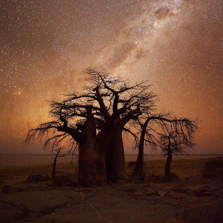 Photograph African Nightfall by Hougaard Malan on 500px
