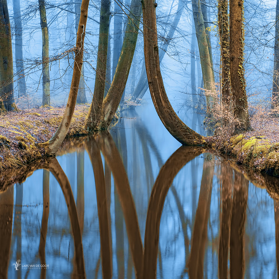 River of Reflections 2 by Lars van de Goor on 500px.com