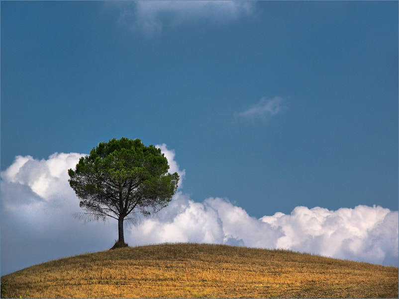 Photograph Touch the Sky by KPK . on 500px