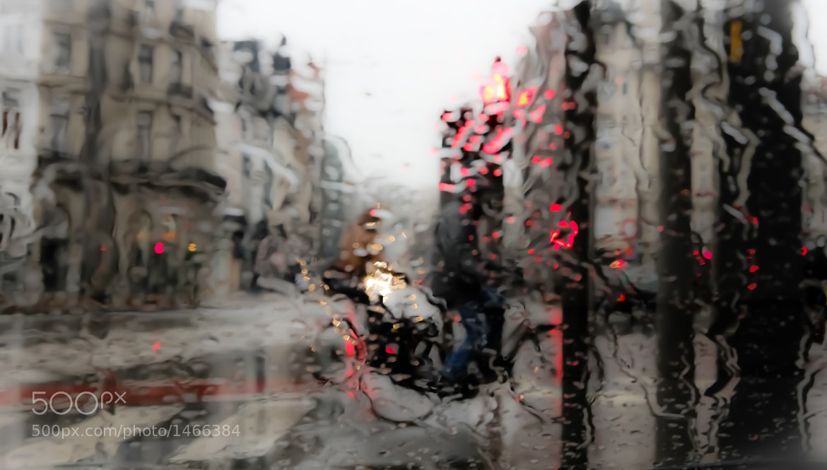 Photograph Who'll stop the rain by Jan Allaerts on 500px