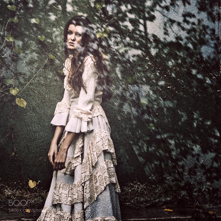 Photograph Untitled by Василий Тихомиров on 500px