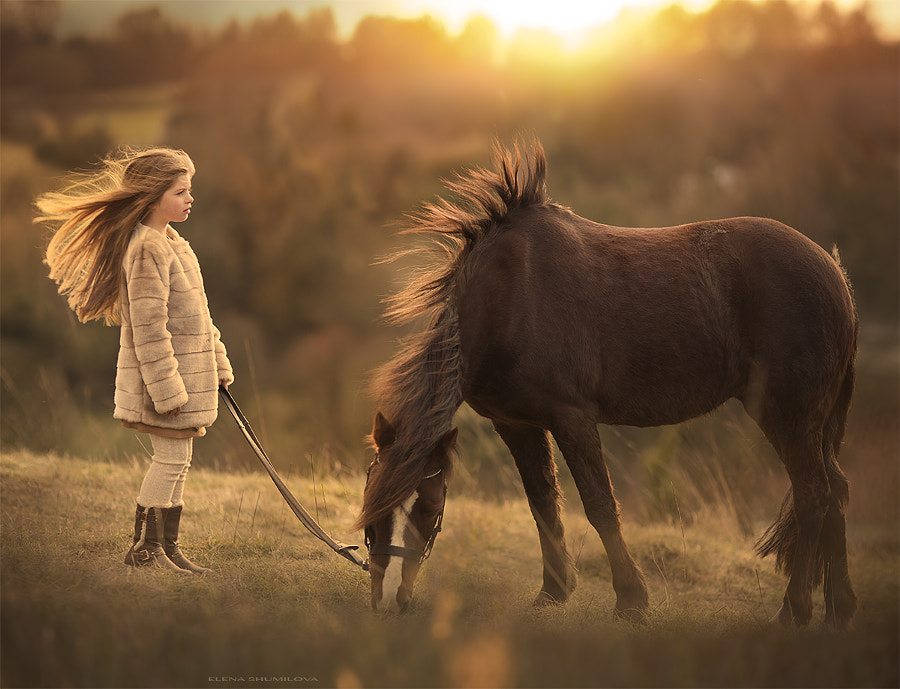 Wind on the Surrey Hills.... (from my workshop in London) by Elena Shumilova on 500px.com