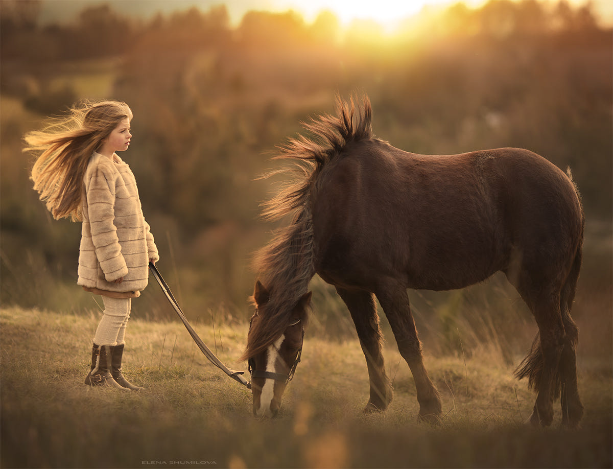 Wind on the Surrey Hills.... (from my workshop in London) by Elena Shumilova on 500px