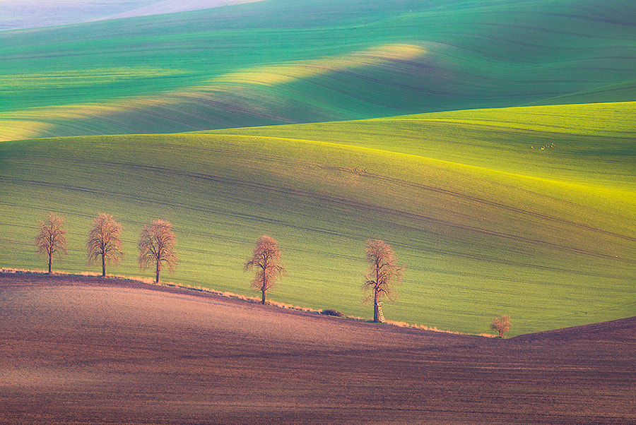 Colors of spring by Marcin Sobas on 500px.com