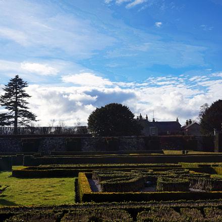 Pitmedden Garden II