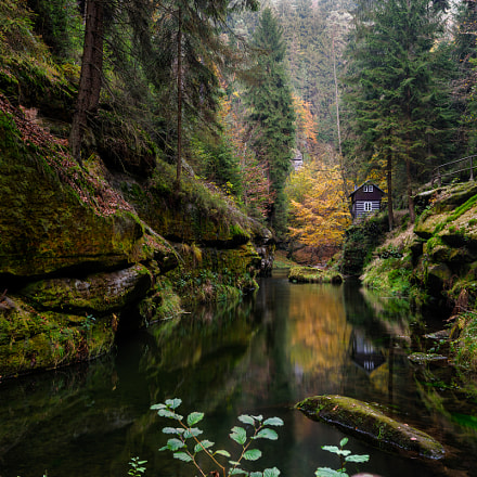 The gorges of the river Kamenice