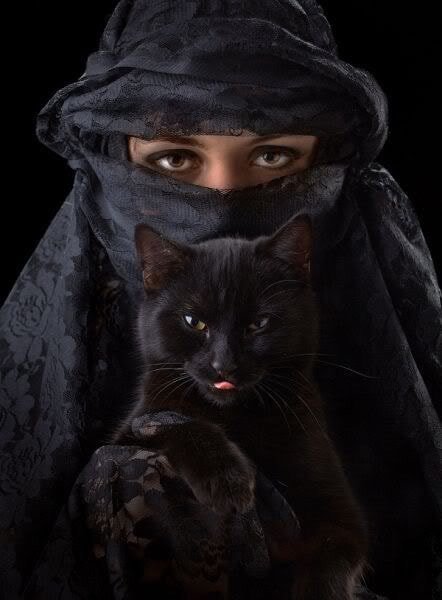 Black Cat by Mark Morano on 500px.com