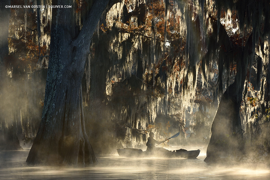 The Quiet Wilderness by Marsel van Oosten on 500px.com