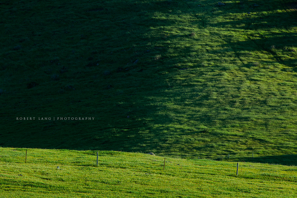 Photograph Fence on a rolling green hill, Australia by Robert Lang on 500px