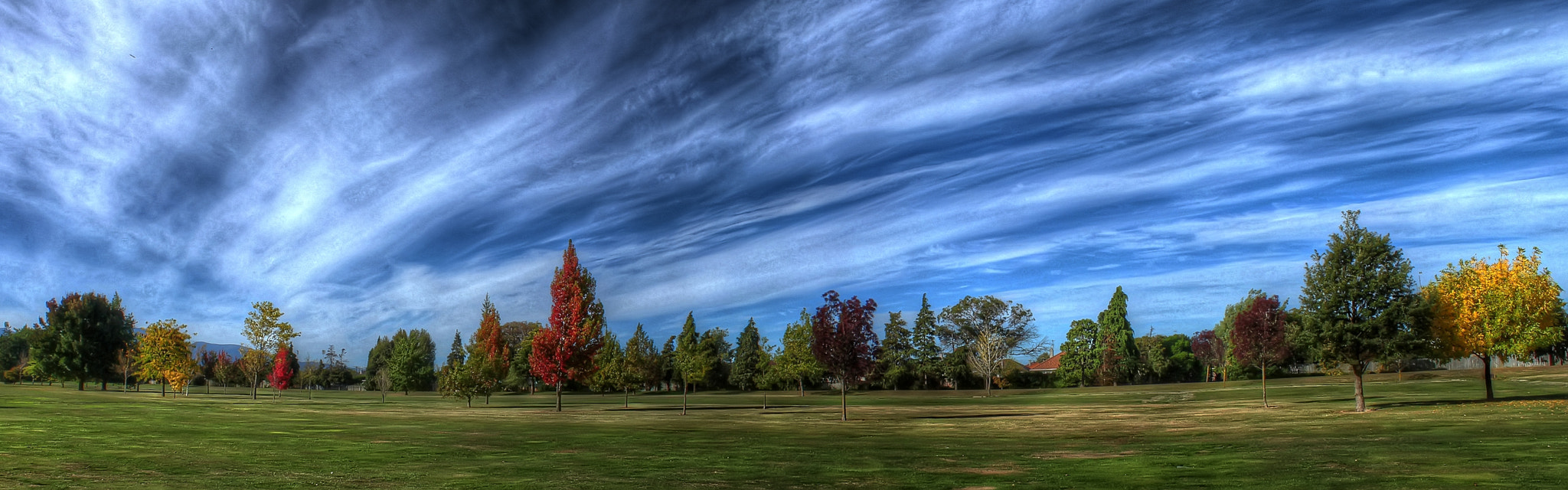 Photograph Spring Colors in HDR by Paul Huisman on 500px
