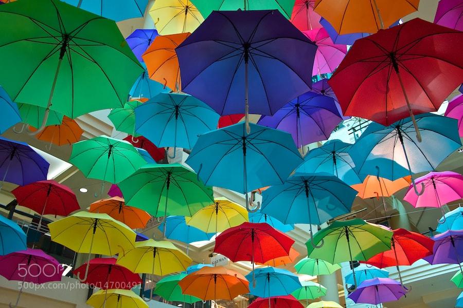 Photograph Les Parapluies by Carl Parow on 500px