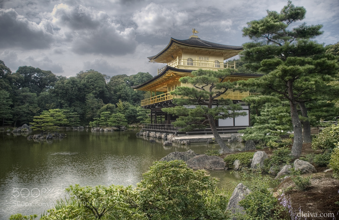 Photograph Kinkakuji, Golden Temple, Kyoto (japan) by Domingo Leiva on 500px
