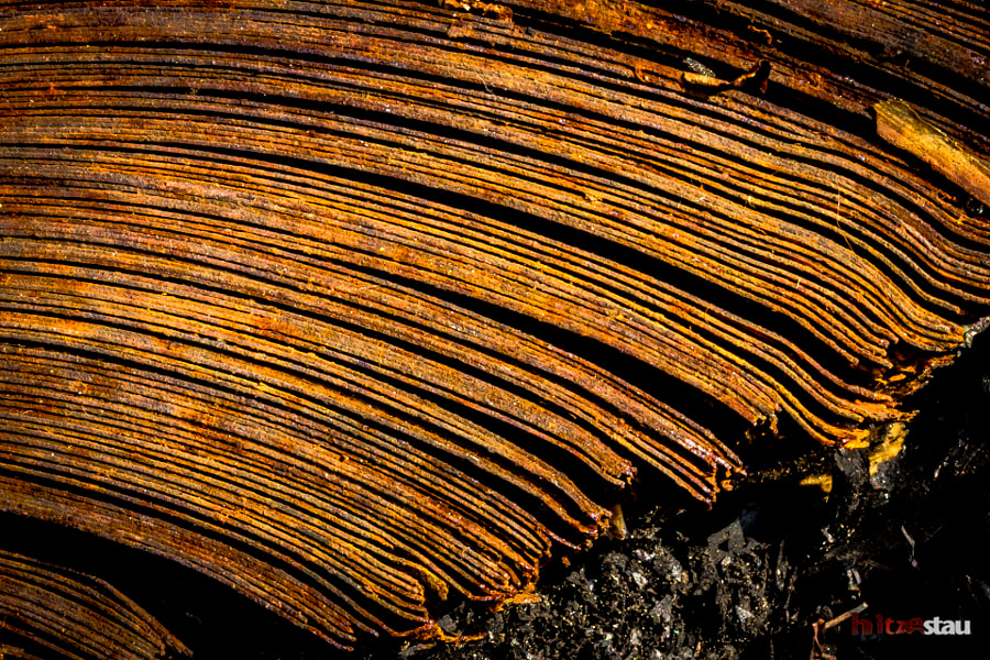 Layers of Rust by hitzestau on 500px.com