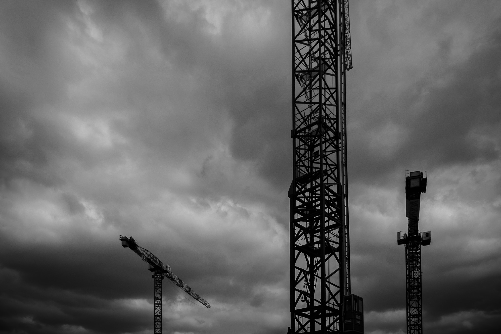 Photograph Cranes in the sky by Matthieu Lepoint on 500px