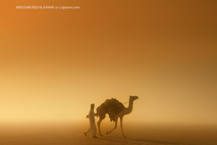 Photograph Friends by Abdulmajeed  Aljuhani on 500px