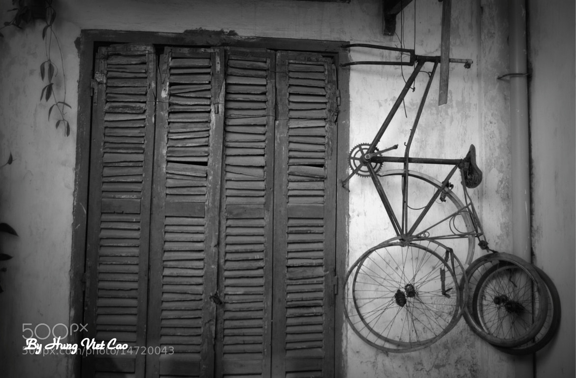Photograph Untitled by Hung Viet Cao on 500px