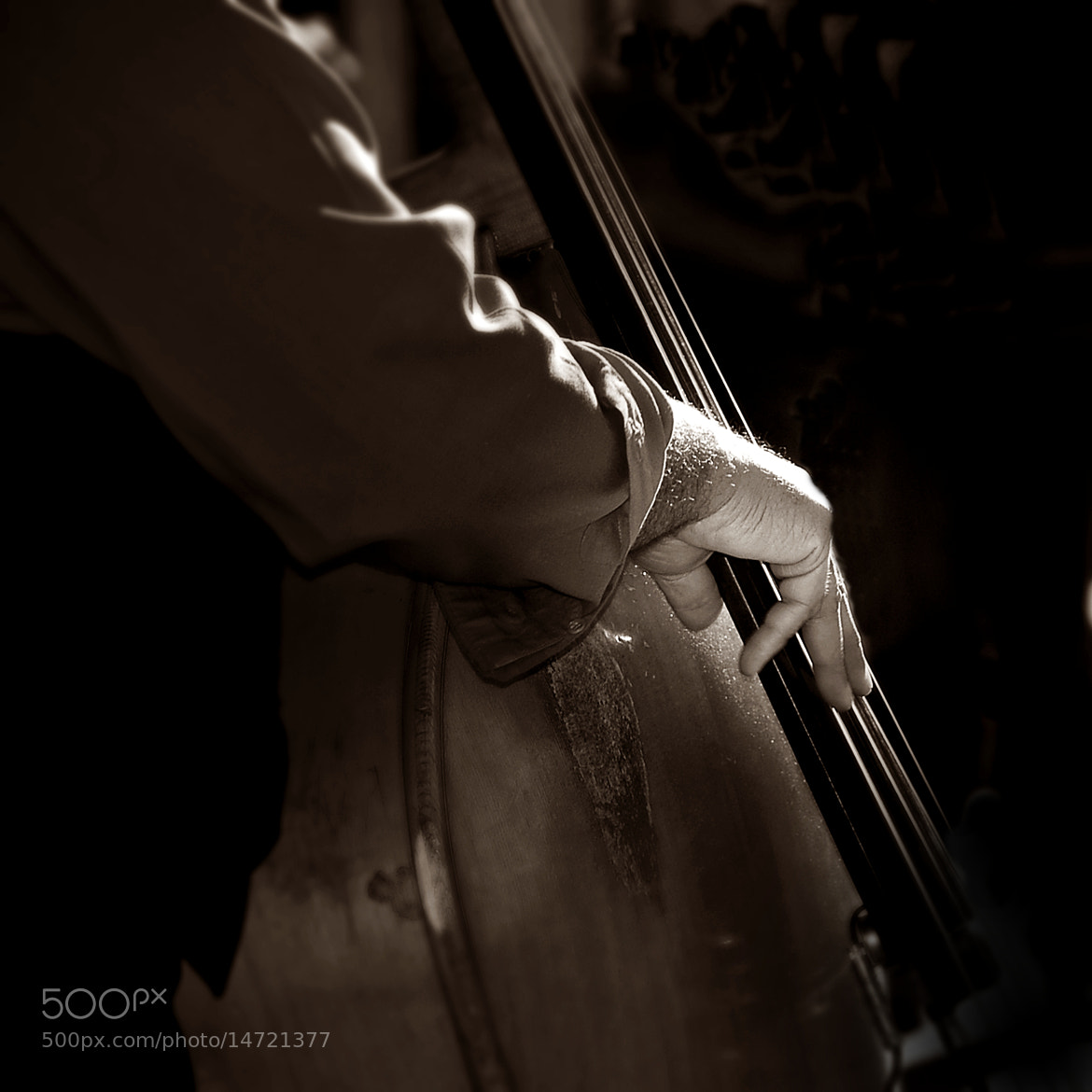 Photograph Jazzy Hand by Mojca Savicki on 500px
