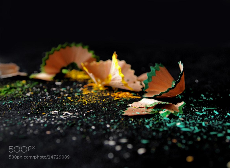 Photograph Lemons by Diana Gracia on 500px