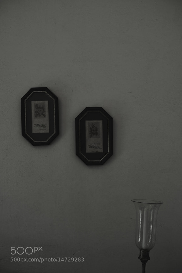 Photograph two pictures on the wall by Nobuo Furuhashi on 500px