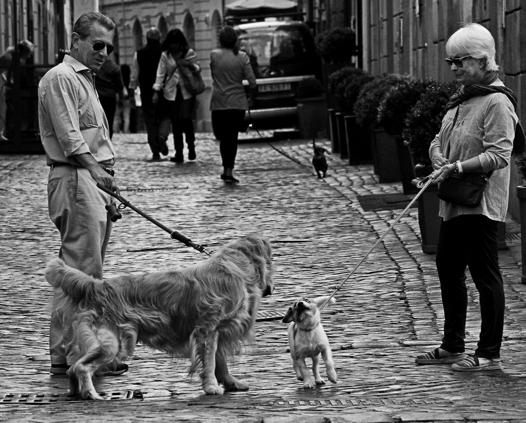 Photograph Making new friends by Giuseppe Grimaldi on 500px