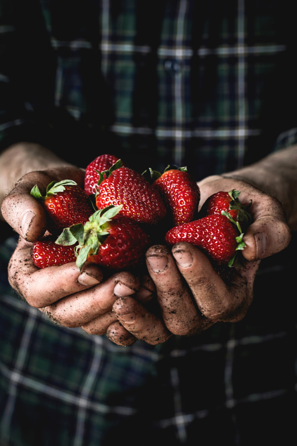 Man holding fresh strawberries by Vladislav Nosick on 500px.com