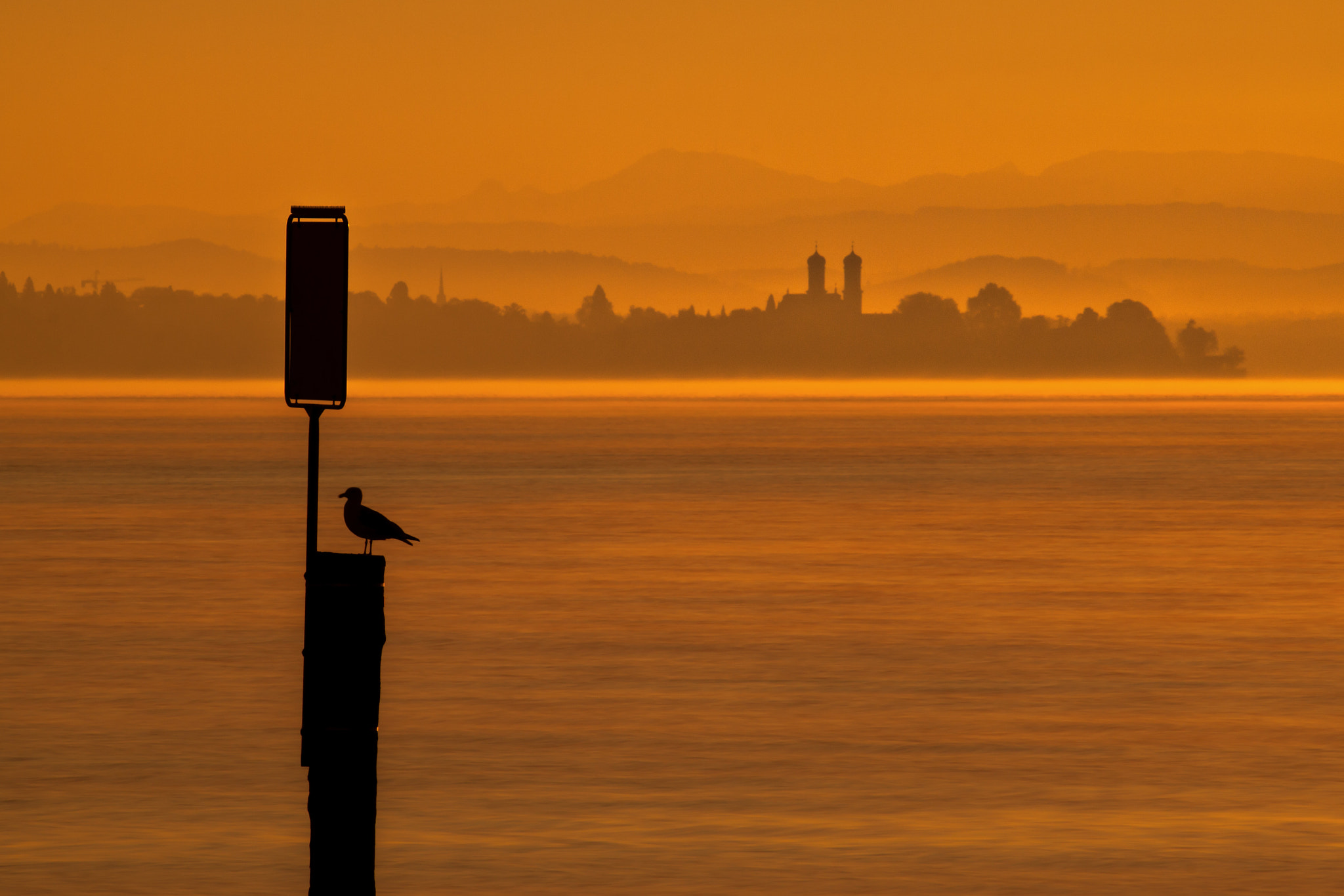 Photograph the early bird catches the worm by Tobias Guter on 500px