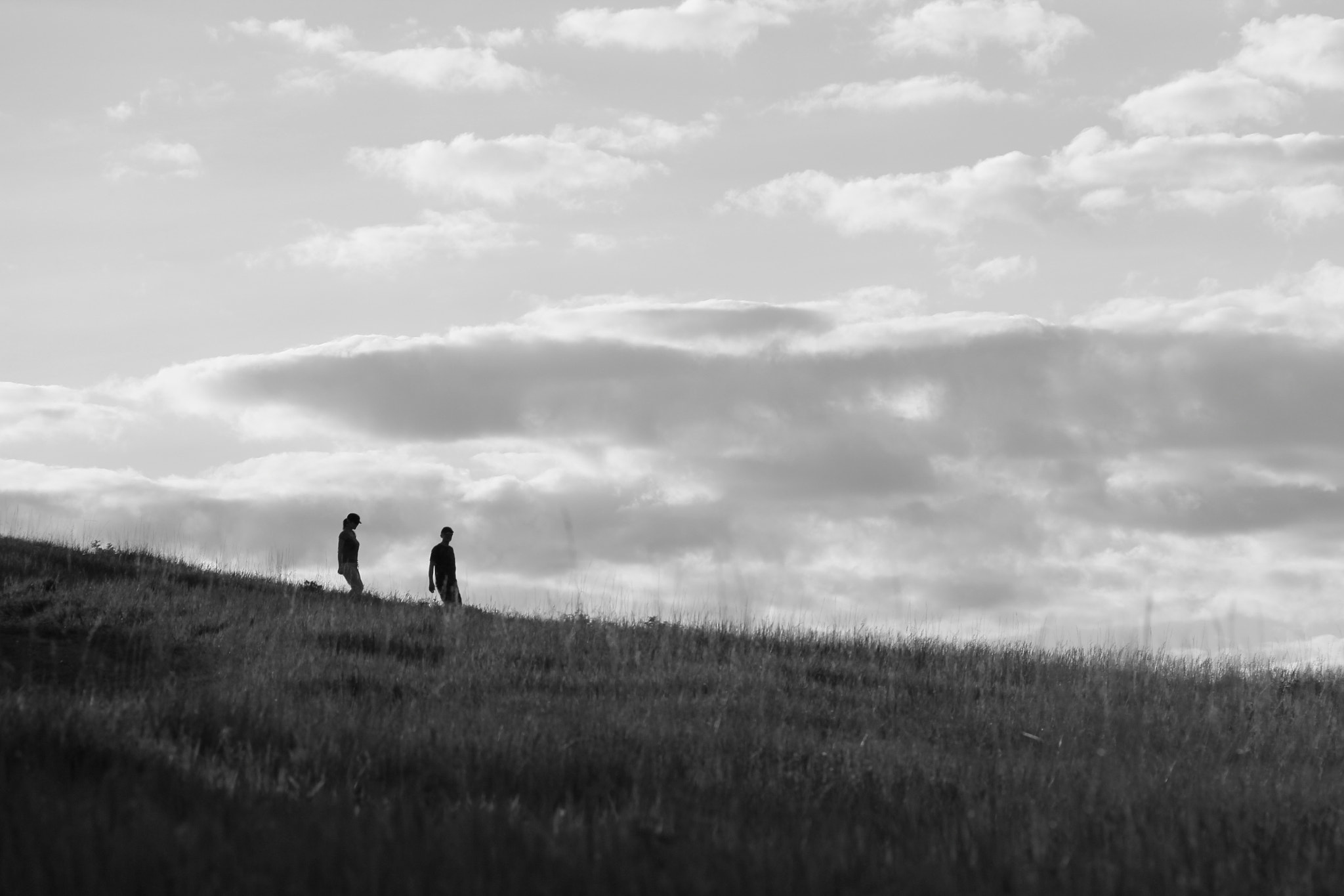 Photograph Nose Hill Park, Calgary by Twinkle Banerjee on 500px
