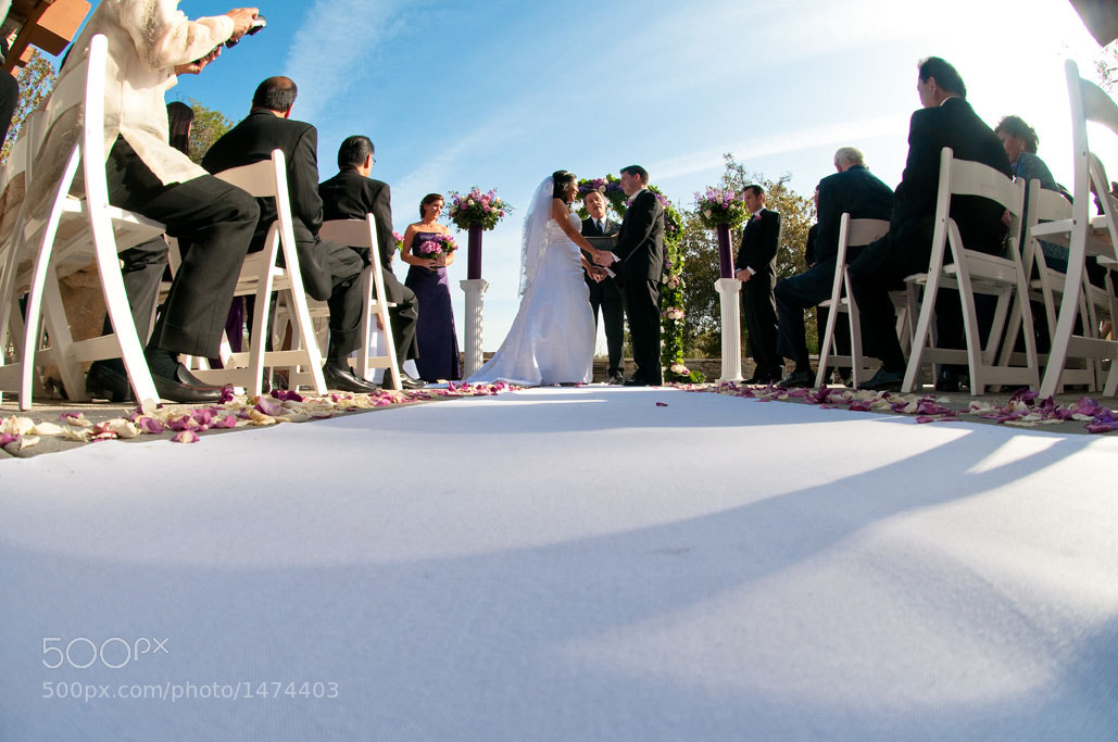 Photograph Hand In Marriage by Gregory Cain Stay☆True Photo on 500px