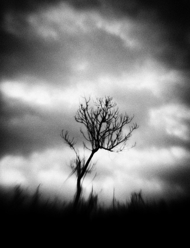 Photograph If you're not here... by Hengki Lee on 500px