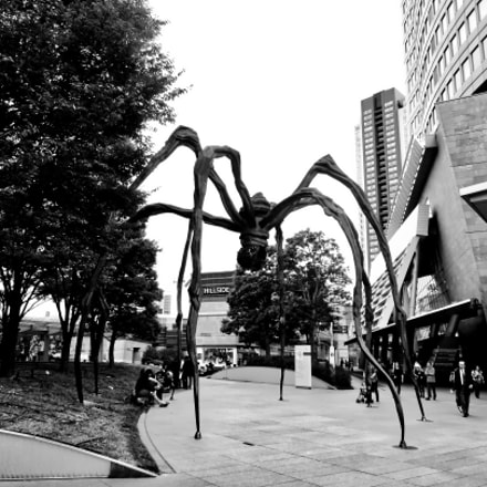 Maman Louise Bourgeois, Sony DSC-W360