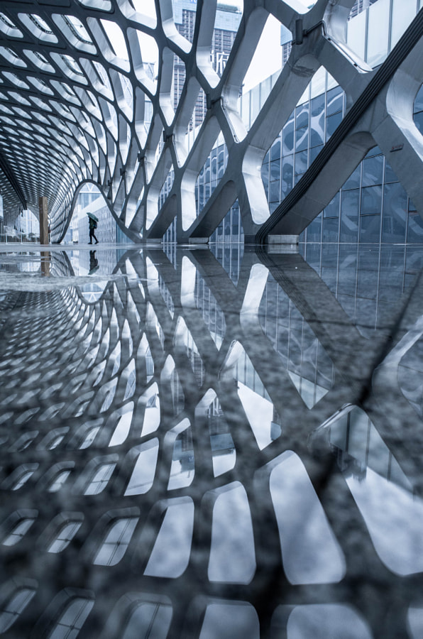 Curvilinear by Jennifer Bin on 500px.com