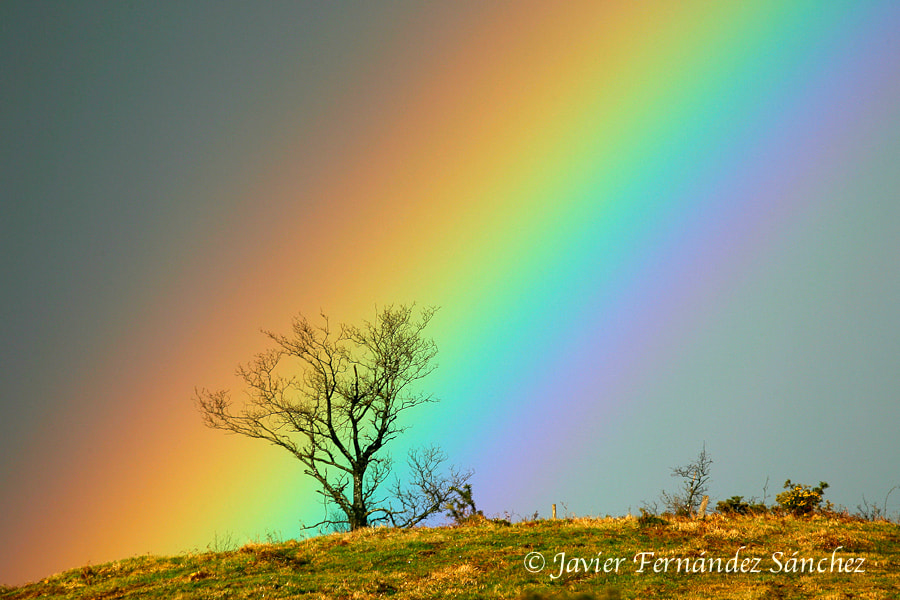 Photograph Rainbow by Javier Fernández Sánchez on 500px