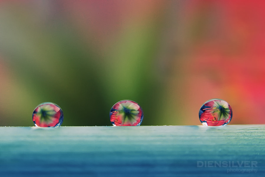 Photograph 3 LOVE by Diens Silver on 500px