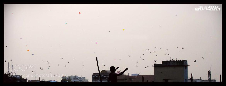 Photograph Kites, kites everywhere by Rajasekhar Shankar on 500px