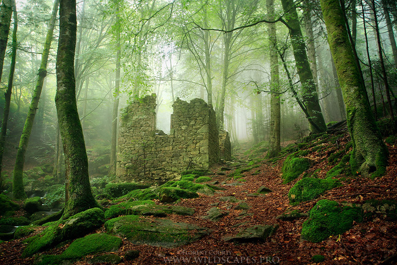 Photograph Remains from the Past by Florent Courty on 500px