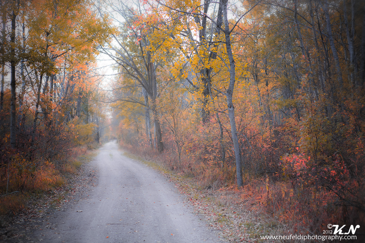 Photograph Fall in the country by Kelvin Neufeld on 500px